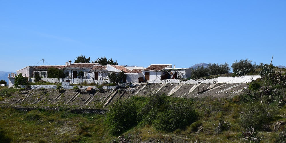 Grape Drying Paseros in the Axarquia