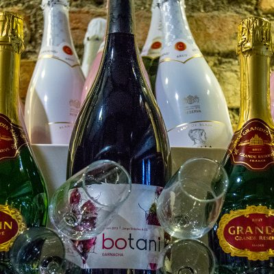 Moet Champagne Bottles & Glasses