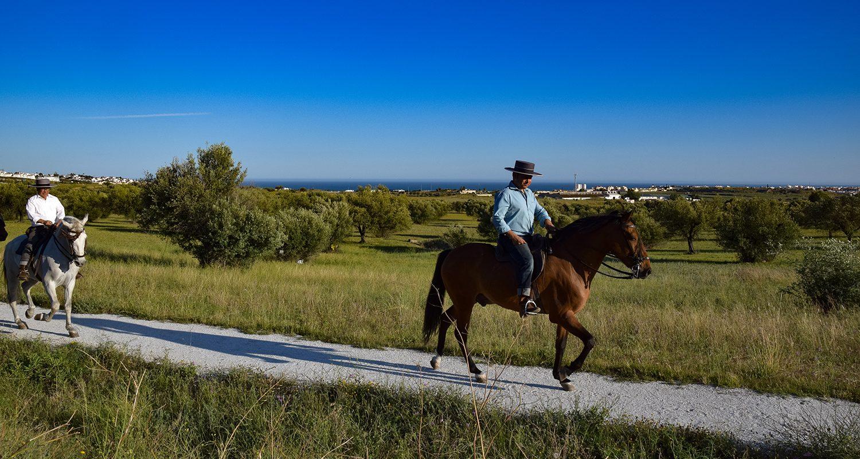 Man riding horse in velez malaga