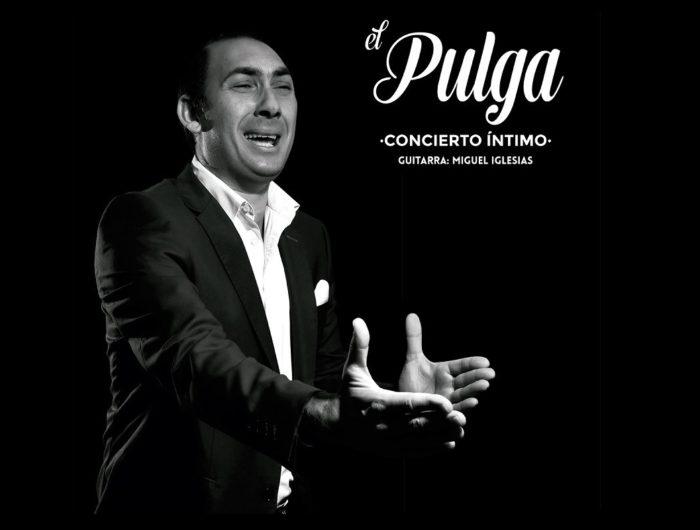 el pulga flamenco singer