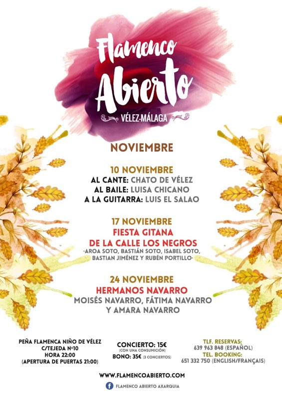 flamenco abierto programme november