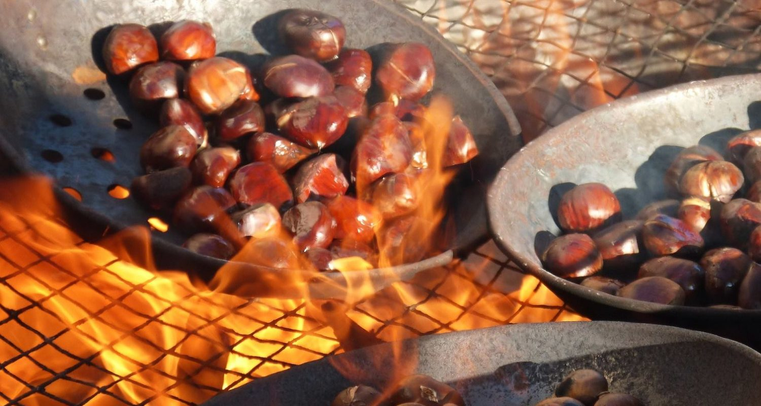 roasting chestnuts in the axarquia