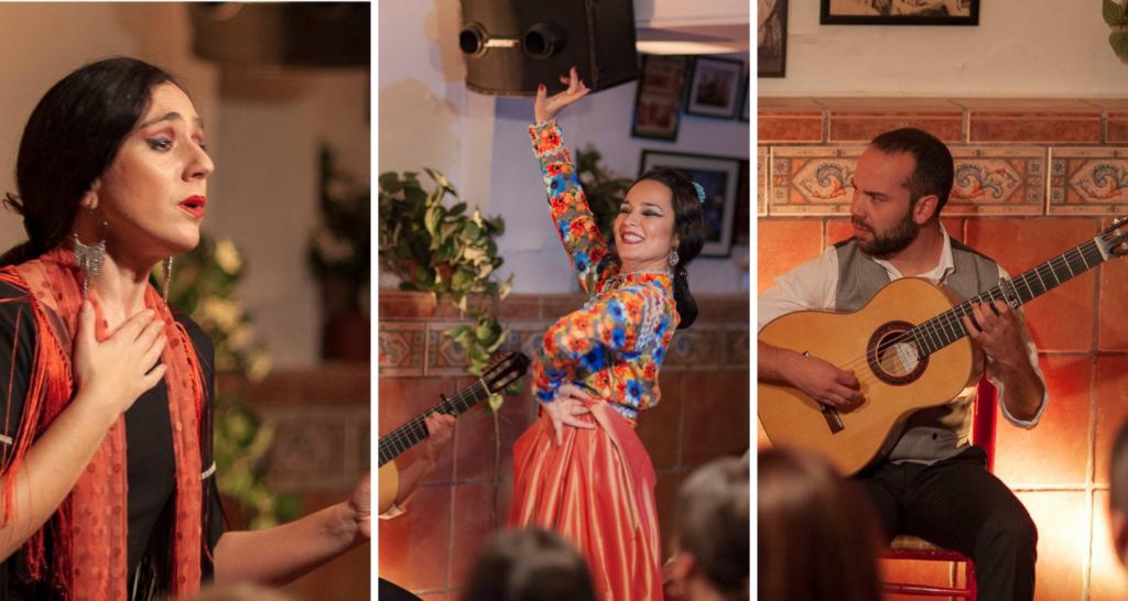 flamenco abierto performing in velez-malaga