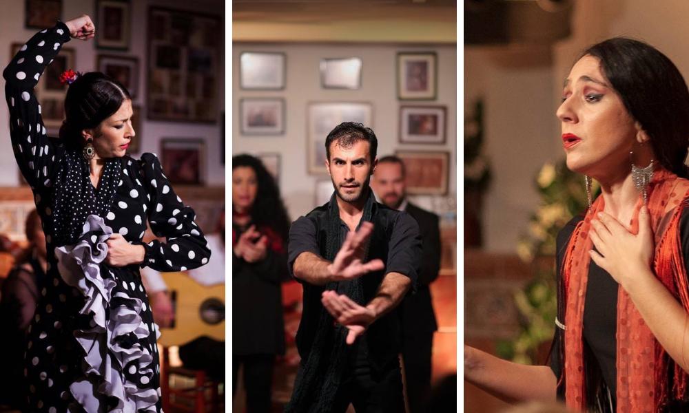 flamenco abierto nights velez malaga