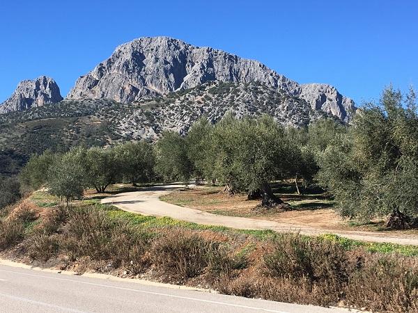 Cycling La Vinuela - Velez-Malaga