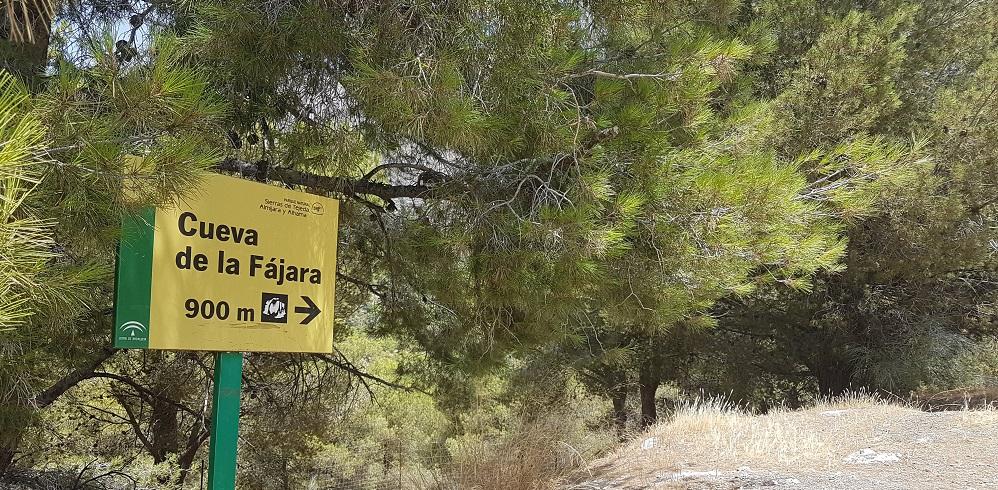 Cueva de la Fajara, Canillas de Aceituno
