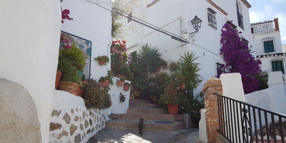 Canillas de Aceituno, Pretty Street