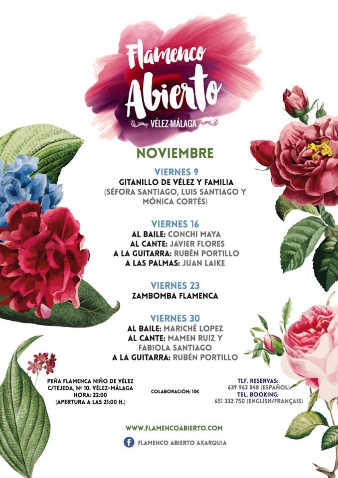 Flamenco in Velez Nov 2018