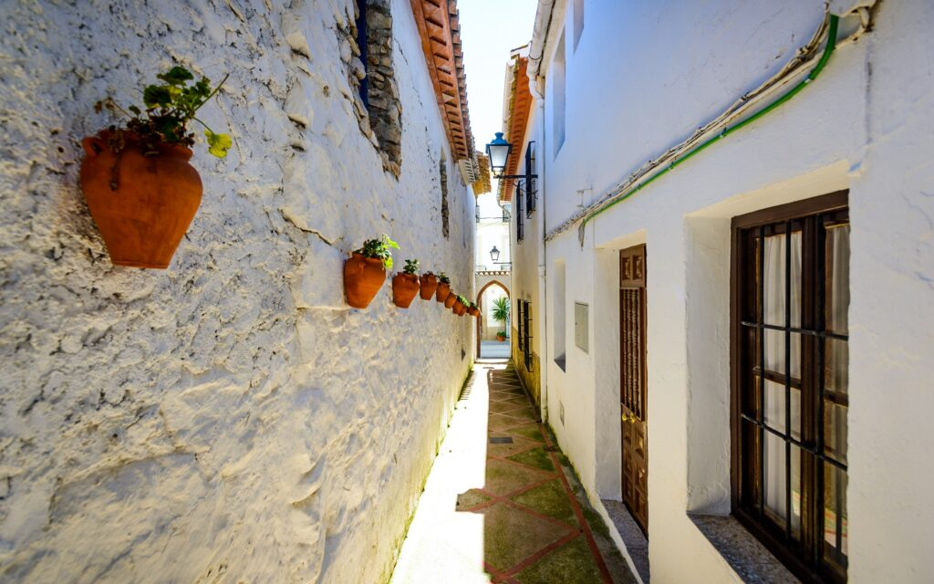 Alfarnate Narrow Streets