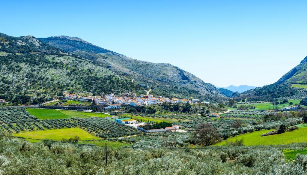 Alfarnate Village. Axarquia