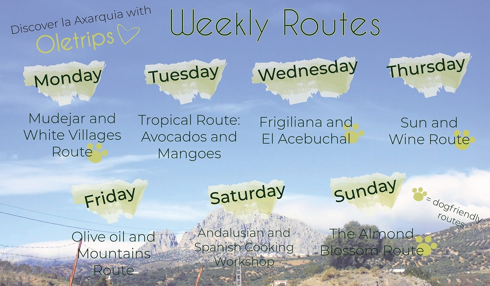 Guided tours of the Axarquia