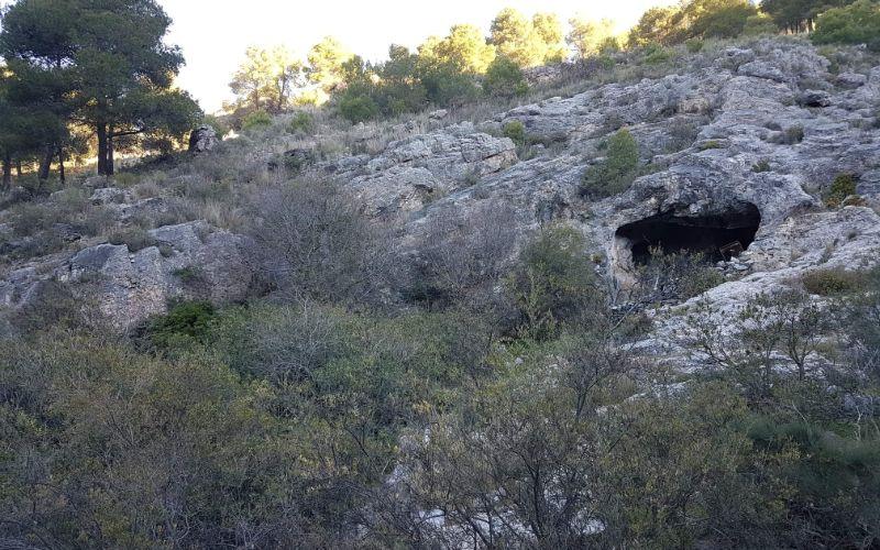 Entrance to Cave near Canillas de Aceituno